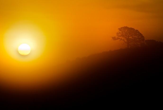 ELC_2462-sunrise